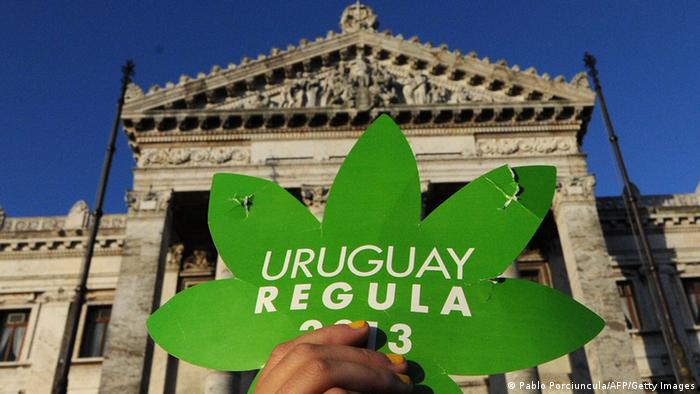 Uruguay Marihuana Legalisierung 2013 (Photo: PABLO PORCIUNCULA/AFP/Getty Images)