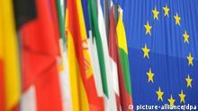 Symbolbild EU Wahl Flaggen der EU