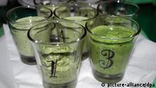 mehrere Gläser mit Grüner Soße nach verschiedenen Rezepten