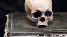 Altes Buch mit Totenschädel