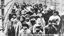Children freed from Auschwitz Concentration Camp by Soviet soldiers