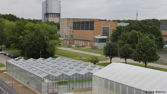 Alle drei Algenanlagen auf dem Gelände des Forschungszentrum Jülich umfassen insgesamt 1500 Quadratmeter.