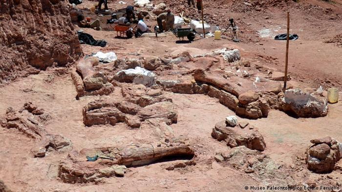 Dinosaurier Fund Argentinien BESCHRÄNKUNG