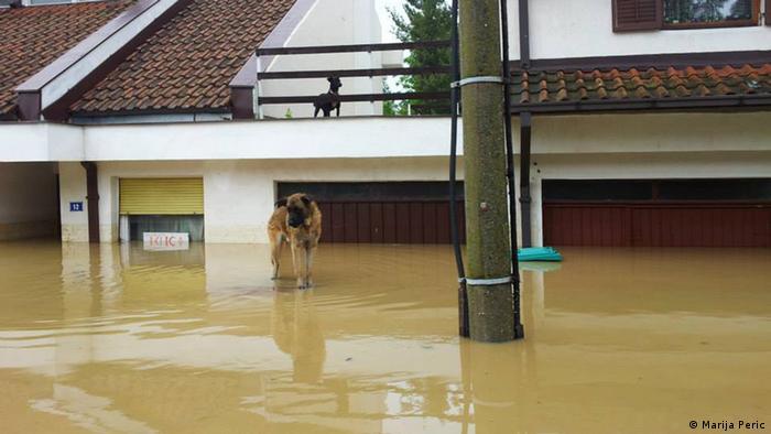 Hochwasser in Obrenovac