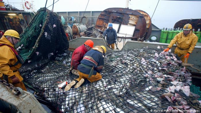 Bildergalerie Europäischer Tag der Meere Hochseefischerei Trawler Frankreich