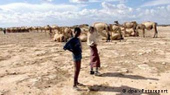 Nomads in the desert in Ethiopia