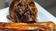 Nahaufnahme des Kopfes der 5.300 Jahre alten Gletscherleiche Ötzi im Archäologischen Museum in Bozen (undatiertes Archivfoto). Mumien haben etwas Furcht erregendes, Erschreckendes, Unerklärliches an sich. Jetzt macht auch Ötzi von sich Reden: Sechs Menschen, die im Zusammenhang mit der Gletscherleiche standen, sind tot. Verbirgt sich hinter dem netten Namen ein grausiges Geheimnis? Nachdem am Sonntag (17.04.2005) der Urgeschichtler und Ötzi-Forscher Konrad Spindler im Alter von nur 66 Jahren in Innsbruck gestorben ist, sind die Italiener - die sowieso zum Aberglauben tendieren - hellhörig geworden. Foto: Archäologisches Museum Südtirol +++(c) dpa - Bildfunk+++