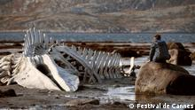 Filmfestival Cannes 2014 Leviathan