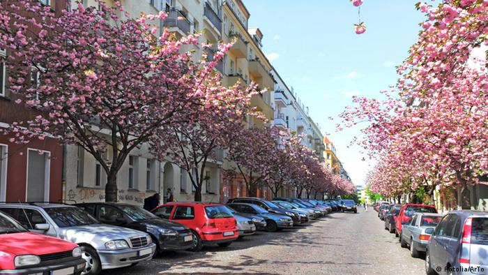 Berlin's rental market a nightmare to many