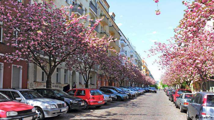 Straße im Frühling in Berlin