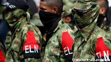 epa03790190 A group of demobilized rebels of the Liberation National Army (ELN as in Spanish) guerrilla during an act to hand their weapons over, in Cali, Colombia, 16 July 2013. Santos travelled from Bogota to Cali to receive a group of 30 demobilized rebels, eight of them women, and three of them pregnant. EPA/Christian Escobar Mora