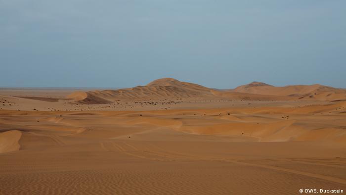 The Namib desert (DW/S. Duckstein)
