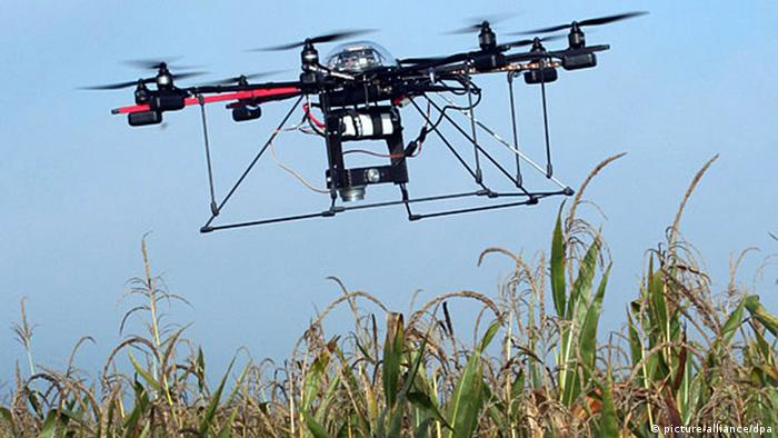 A symbolic drone takes off in a corn field