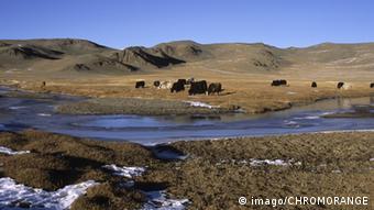 Территория Монголии