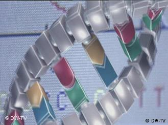 A computer image of part of a double helix, the structure of DNA