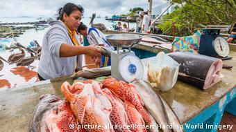 Fischerei Ecuador