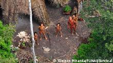 Das Bild entstand 2010 bei einem Überflug der brasilanischen Regierung und wurde durch die Behörde FUNAI (Gleison Miranda) aufgenommen. Es zeigt eine Gemeinde unkontaktierter Indigener in Brasilien an der Grenze zu Peru mit Körben voller Maniok und frischen Papayas aus ihren Gärten.