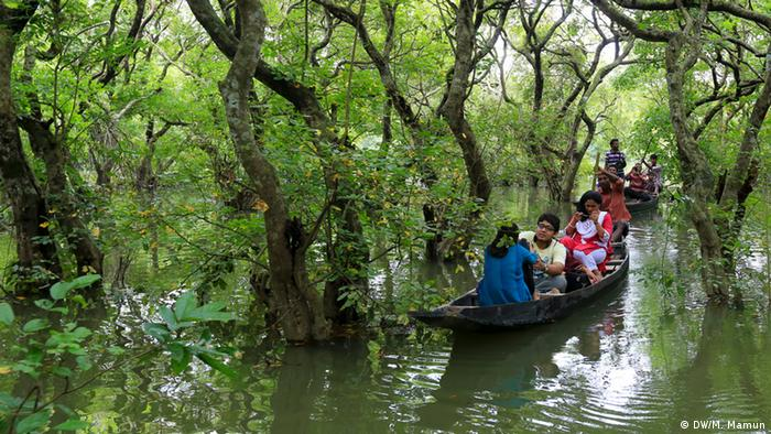 Ratargul Sumpfregenwald in Bangladesch