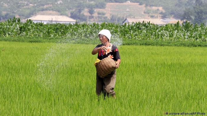 Nordkorea Bauern