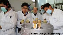 Iran Atom Archiv 20.01.2014 Natanz