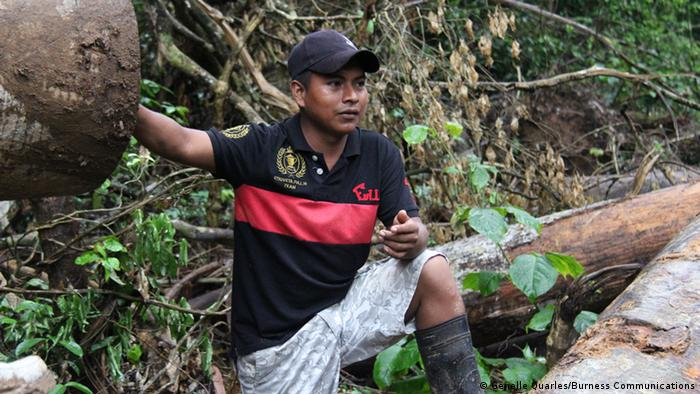 Indigenous forester in Panama