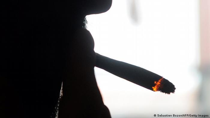 ماریجوانا یکی از انواع بسیار رایج مواد مخدر به شمار میرود