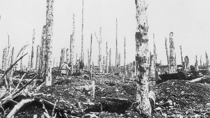 In 1918, the former forest in Hartmannsweilerkopf was completely destroyed