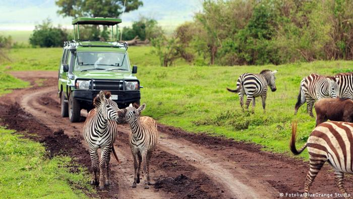 negative socio cultural impact of tourism in kruger national park This paper explores the socioeconomic impacts of tourism associated with the kruger national park, south africa's flagship national park, on the neighbouring villages.