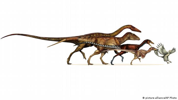 Dinosaurier Archaeopteryx