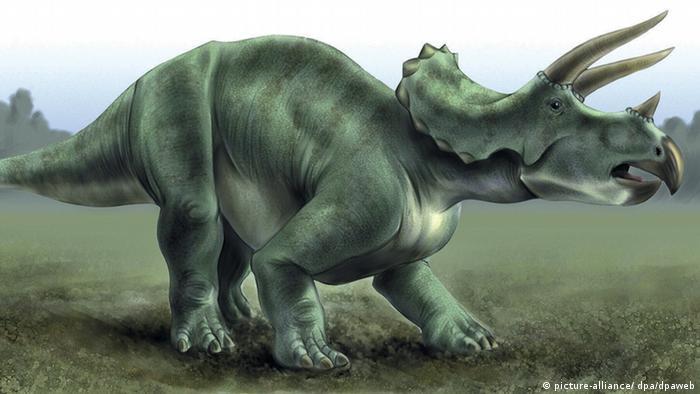 اكتشاف أحد أغرب الديناصورات ذات القرون منوعات نافذة Dw عربية