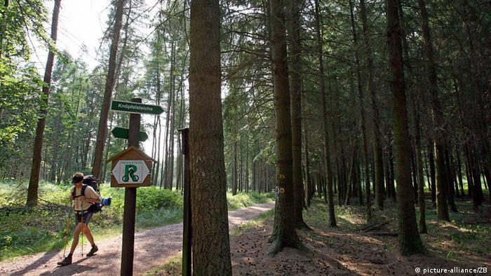 Пішохідні маршрути Німеччини