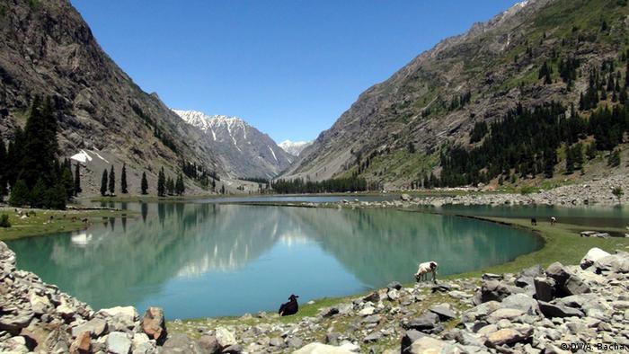 Bildergalerie Pakistan Sommerfest im Swat Tal (DW/A. Bacha)