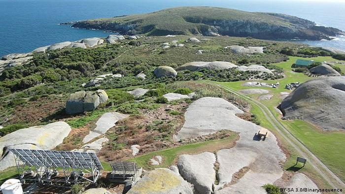 Bird view at Montague Island (Photo: CC BY-SA 3.0/Binarysequence)