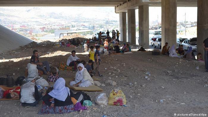 Flüchtlinge campieren unter einer Brücke in Dohuk. Foto: REUTERS/Ari Jalal
