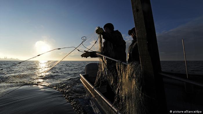 Deutschland Bodensee Bodenseefischer