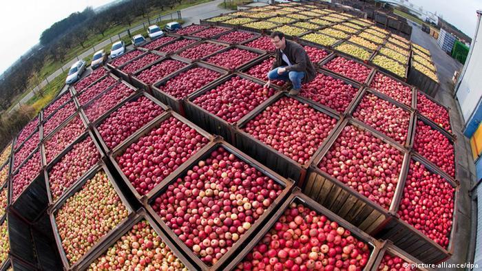 Немецкие яблоки