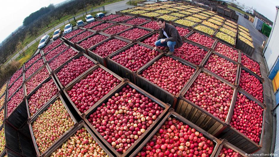 EU to help farmers hit by Russian import ban | DW | 18.08.2014