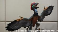 Modell eines Flugsauriers