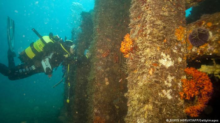 Artificial reefs and scuba diver underwater