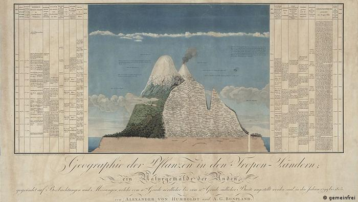 Humboldt combined geology, meteorology, botany and geography to formulate his theory of plant geography. Tableaux such as this, which shows Chimborazo in the Andes, bring together information from these different sciences