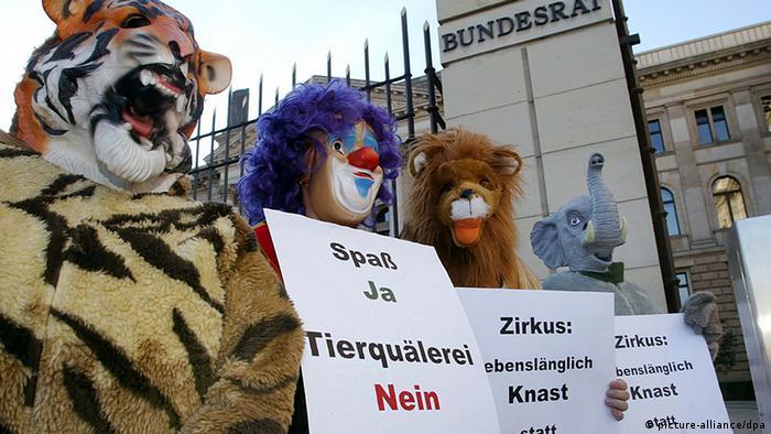 Защитники прав животных проводят пикет