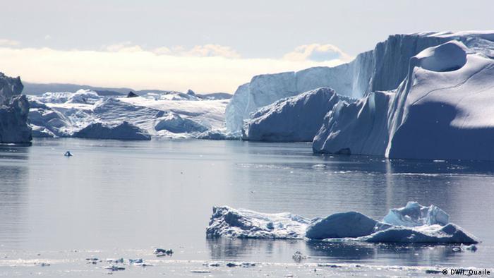 Grönland Gletscher (Foto: Irene Quaile)