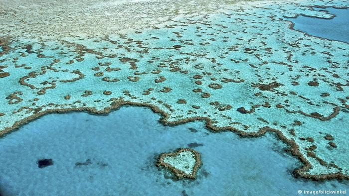 Aerial view of the Great Barrier Reef in Australia (Picture: imago/blickwinke)