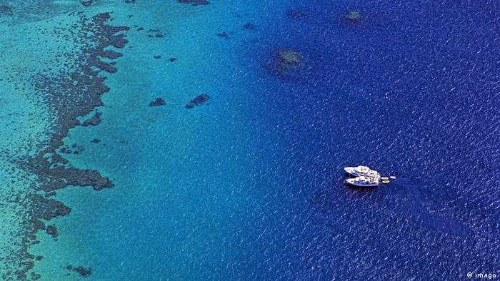 Aerial View of Michaelmas Reef offshore from Cairns, Queensland, Australia