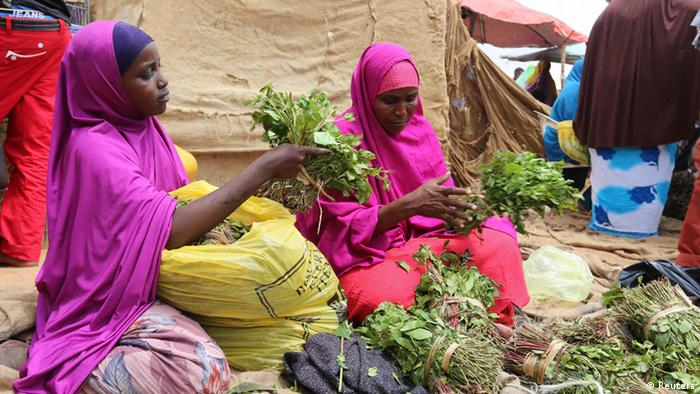 Bildergalerie Khat Verbot in Großbritannien Lage in Somalia
