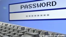ARCHIV - ILLUSTRATION - Eine fiktive Eingabemaske für ein Passwort (engl. Password) auf einem Computerbildschirm, aufgenommen mit einer Computertastatur am 23.01.2012 in Hannover. Mehrere Millionen Zugangsdaten für Online-Dienste sind nach Angaben des Bundesamt für Sicherheit in der Informationstechnik (BSI) gekapert wurden. Foto: Julian Stratenschulte/dpa (zu dpa «BSI: Millionen gestohlener Online-Nutzerkonten aufgetaucht» vom 21.01.2014) +++(c) dpa - Bildfunk+++