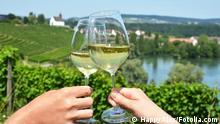 Schweiz Weingläser Weingut