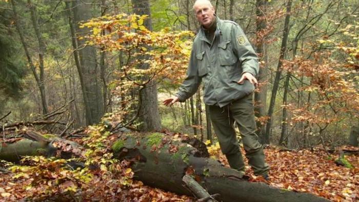 27.08.2014 DW Projekt Zukunft Peter Wohlleben Forstwirt