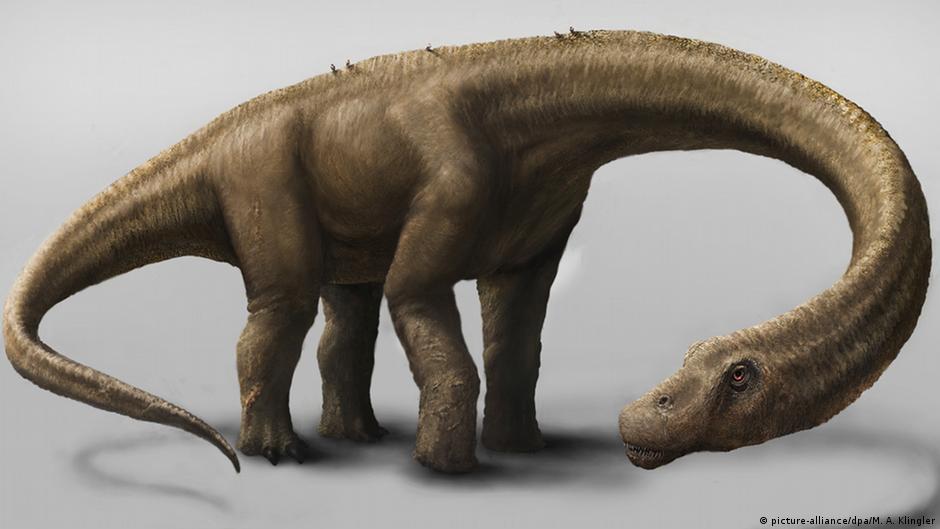 علماء يكتشفون أحد أكبر الديناصورات في العالم   DW   05.09.2014