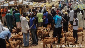 Markt in Mubi, Nigeria (Foto: epa)